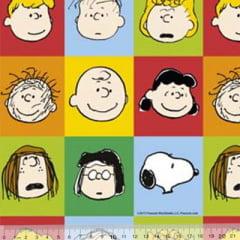Tecido Tricoline Personagens F. Maluhy - Snoopy Quadrados Coloridos - 100% Algodão - Largura 1,50m