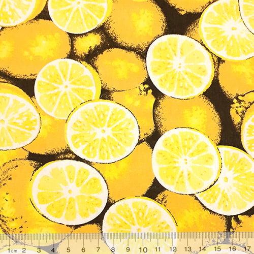 Tecido Tricoline Frutas - Laranjas - 100% Algodão - Largura 1,50m
